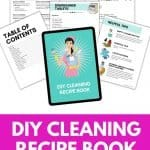 DIY Cleaner Recipe Book