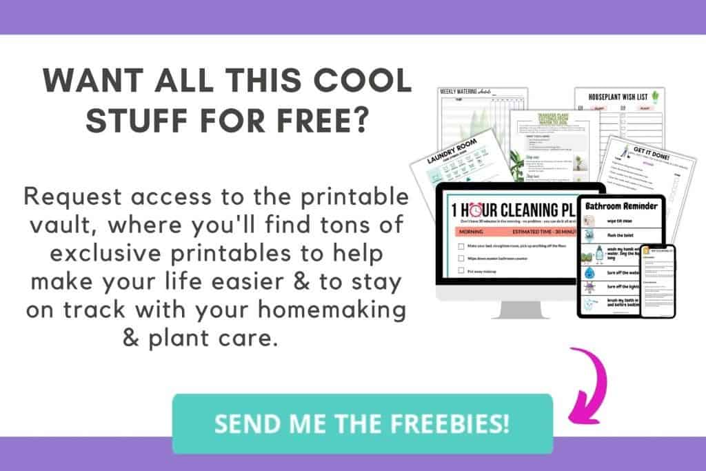 Free Homemaking, Cleaning and Plant Care Printables Bloomingful Peach