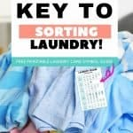 As simple as the concept of laundry is, one of the most overlooked parts of the laundering process is the reluctance to sorting. Find out how to sort laundry properly and the steps you need to take to keep your garments looking fresh.