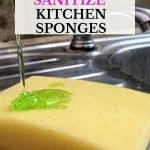 10 of the easiest ways to clean a smelly sponge. To reduce the growth of bacteria that is the leading cause of a smelly kitchen sponge, it's recommended you throw your sponge out every two weeks. These 10 absolutely easy ways to clean a smelly kitchen sponge will keep your sponges smelling fresh as the day you bought them.