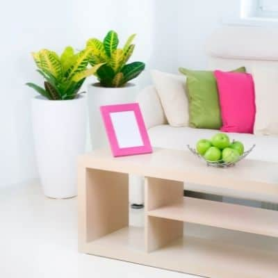bloomingful peach how to clean your house fast